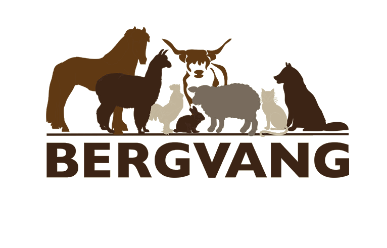 Bergvang AS
